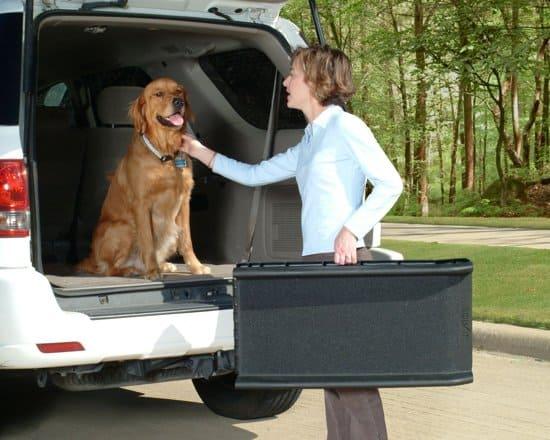 Hondenloopplank -