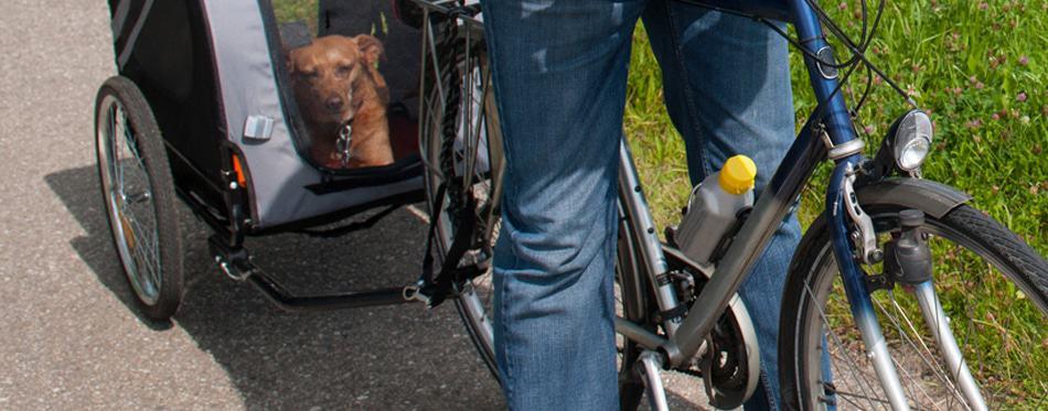 best-fietskar-voor-honden