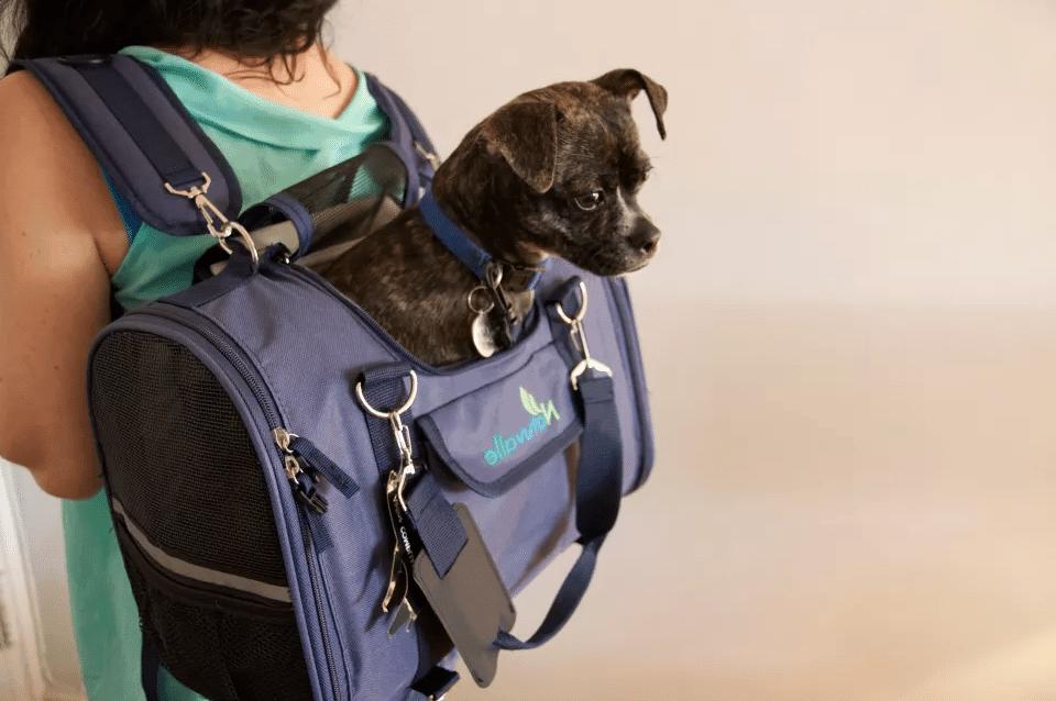 beste-hondentassen