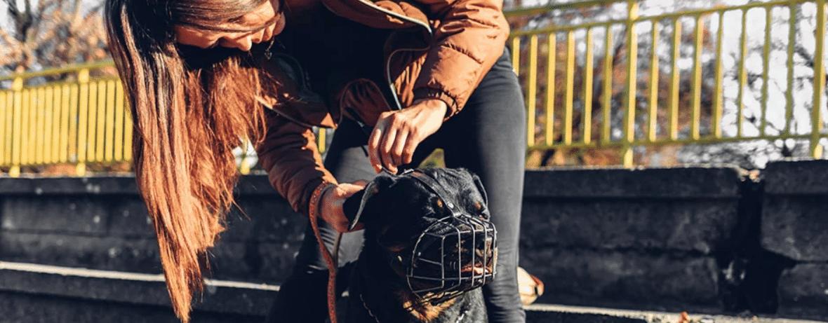 honden muilkorf