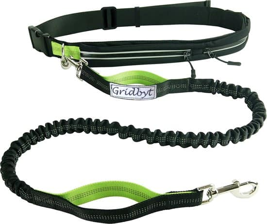 Gridbyt Hondenlijn - Hondenriem - Zwart/Groen - 70-120 cm
