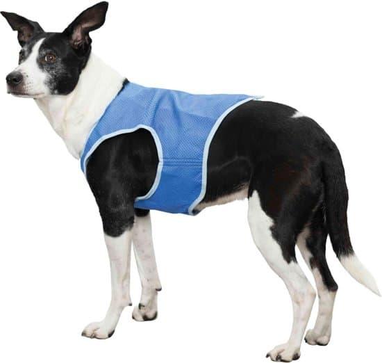 Koelvest voor de hond XS: omvang 32 cm