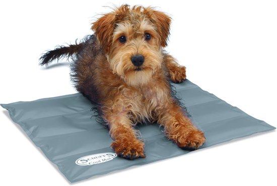 Scruffs Koelmat Hond - Grijs - S: 50 x 40 cm