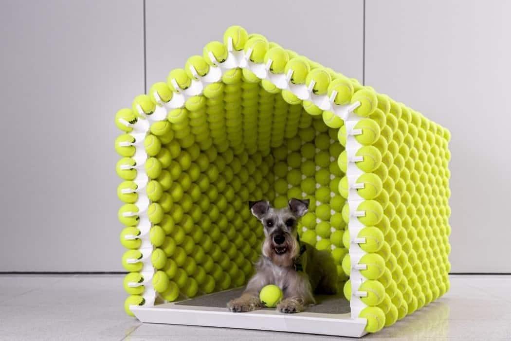 Beste Hondenhuisje