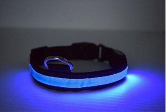 LED Verlichte Hondenhalsband - Blauw - Maat S - Veilig voor je hond in het donker