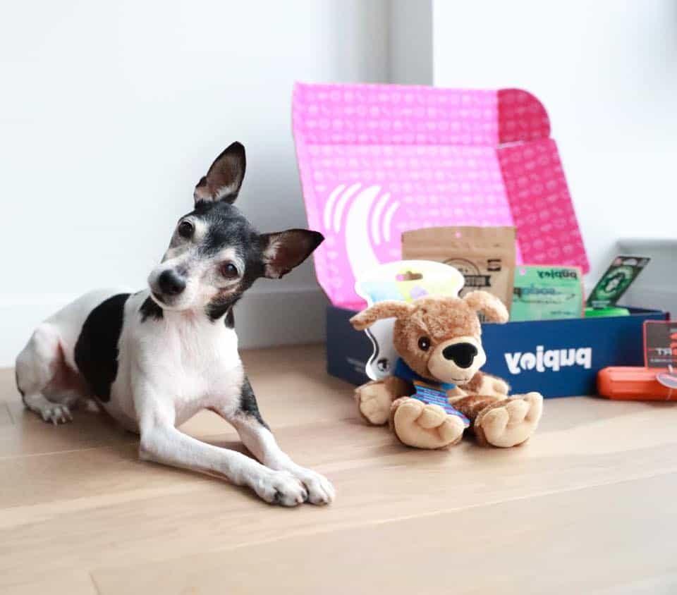 Puppypakketten vergelijken