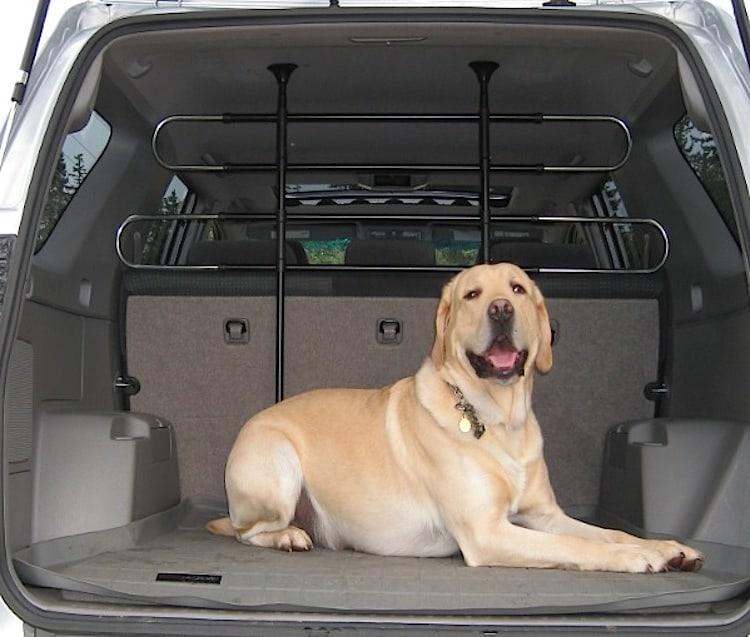 Beste Hondendekens voor in de auto