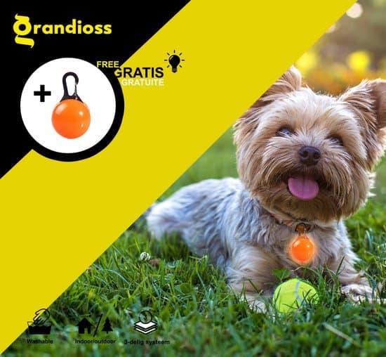 Hondentoilet - Geurbestendig & Hondvriendelijk Kunstgras - Uitneembare Opvangbak - Voor Puppy's & Kleine Honden - Peddy Trainer - Indoor en Outdoor - 47 x 34 cm - Nu met Gratis LED-Hals Lampje - Grandioss®